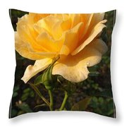 Honey Perfume 2 Throw Pillow