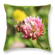 Honeybee And Clover Throw Pillow