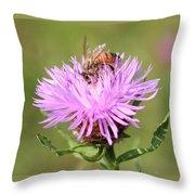 Honeybee At Work Throw Pillow
