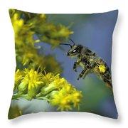 Honeybee In Flight Throw Pillow