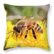 Honeybee On A Dandelion Throw Pillow