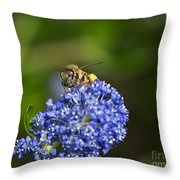 Honeybee On California Lilac Throw Pillow