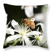 Honeybee On Clematis Throw Pillow