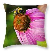 Honeybee On Echinacea Flower Throw Pillow
