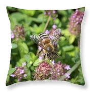 Honeybee On Heal All Throw Pillow