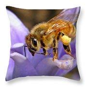 Honeybee On Hyacinth Throw Pillow