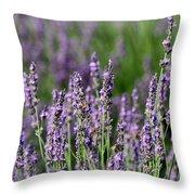 Honeybees On Lavender Flowers Throw Pillow