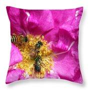 Honeybees On Pink Rose Throw Pillow