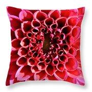 Honeycomb Dahlia Throw Pillow