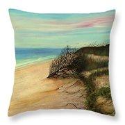 Honeymoon Island Florida Throw Pillow