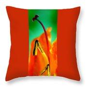 Honeysuckle Spectacular Throw Pillow