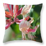 Honeysuckle With Keyhole Throw Pillow