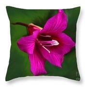 Hong Kong Orchid Throw Pillow
