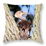 Hooded Merganser Duck Throw Pillow