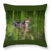 Hooded Merganser Duckling Throw Pillow