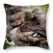 Hooded Merganser Female Throw Pillow