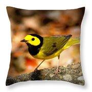 Hooded Warbler - Img 9352-003 Throw Pillow