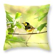 Hooded Warbler - Img_9274-007 Throw Pillow