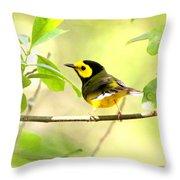 Hooded Warbler - Img_9274-009 Throw Pillow
