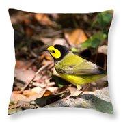 Hooded Warbler - Img_9349-001 Throw Pillow