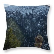 Hoodoo Throw Pillow