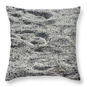 Hoof Prints In Sand Throw Pillow