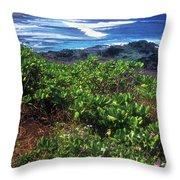 Hookipa Beach Flowers Maui Hawaii Throw Pillow