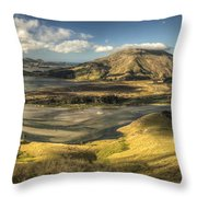Hoopers Inlet And Cape Saunders New Throw Pillow