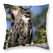 Hoot Hoot Throw Pillow