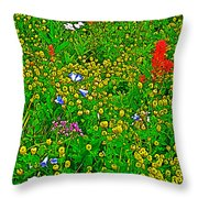 Hop Clover And Scarlet Paintbrush And Nodding Onion And Harebells Along Swiftcurrent Pass Trail-mt   Throw Pillow