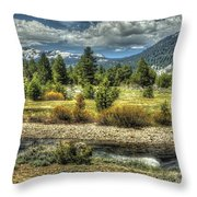 Hope Is Near Throw Pillow