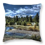 Hope Valley Wildlife Area 2 Throw Pillow