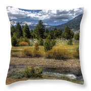 Hope Valley Wildlife Area Throw Pillow