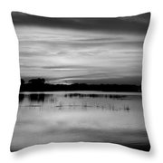 Horizons Bw Throw Pillow