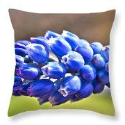 Horizontal Bluebell Throw Pillow