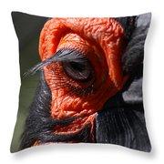 Hornbill Closeup Throw Pillow