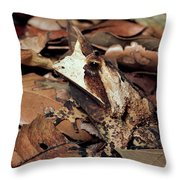 Horned Frog Camouflaged In Leaf Litter Throw Pillow