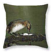 Horned Grebe Adult On Floating Nest Throw Pillow