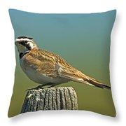 Horned Lark Eremophila Alpestris Throw Pillow