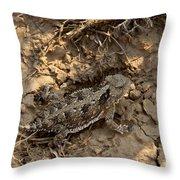 Horned Lizard   #8903 Throw Pillow
