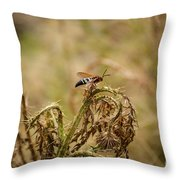 Hornet And Thorn Throw Pillow