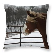 Horse 09 Throw Pillow