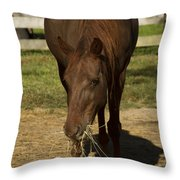 Horse 32 Throw Pillow