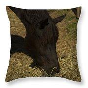 Horse 34 Throw Pillow