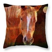 Horse 7 Throw Pillow