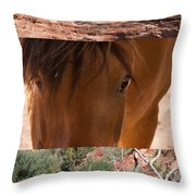 Horse And Canyon Throw Pillow