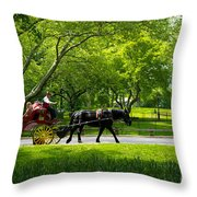 Horse And Carriage Central Park Throw Pillow