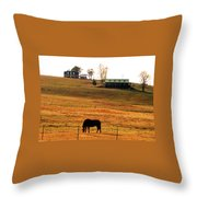 Horse And Farm By Jan Marvin Throw Pillow