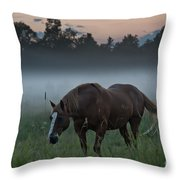 Horse And Fog Throw Pillow