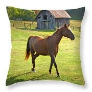 Horse And Old Barn In Etowah Throw Pillow